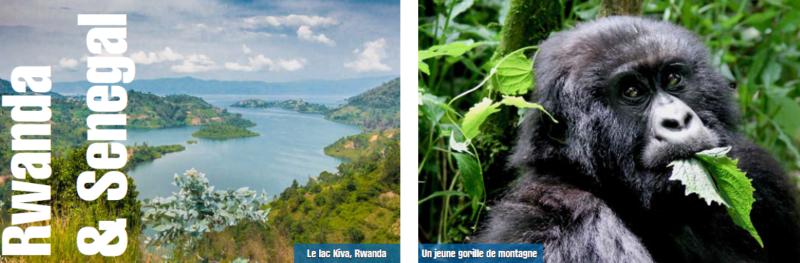 les-tendances-de-levenementiel-pays-incentive-rwanda-senegal